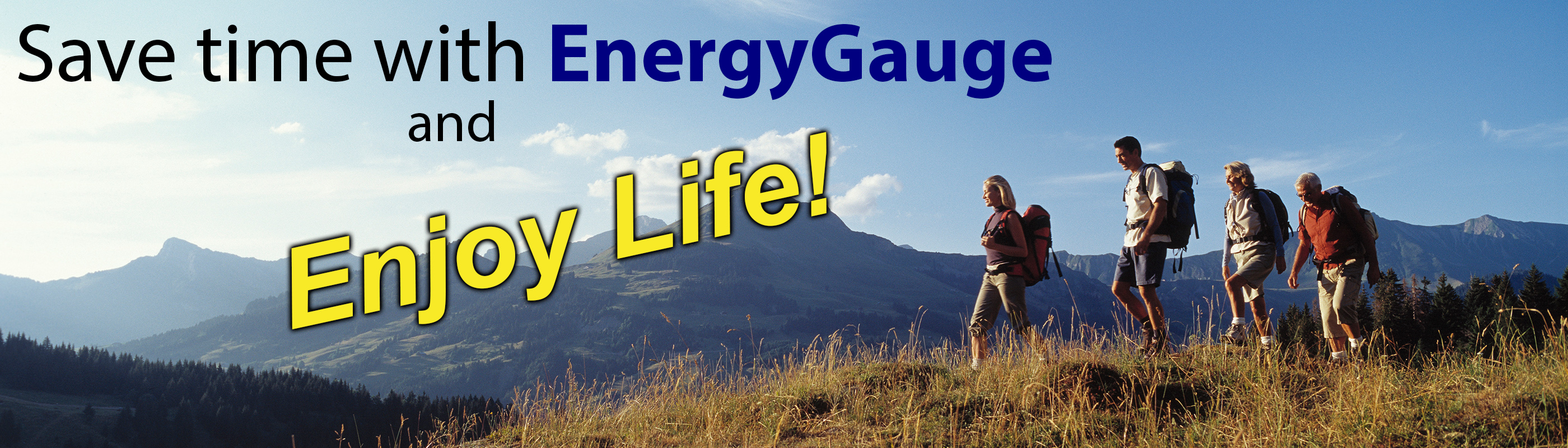 Save time with EnergyGauge